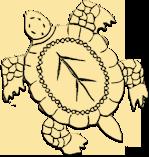 Turtle Creek Club